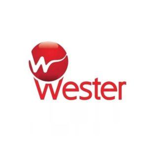 Насосы Wester